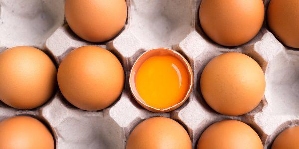 Uova nel frigo - Doctor chef - Federico Francesco Ferrero